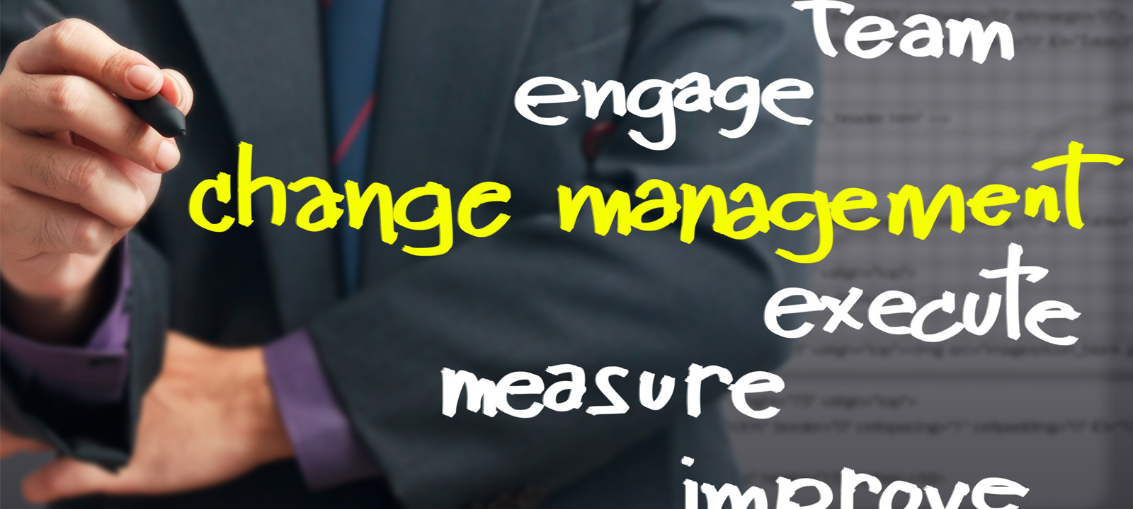 Expertise in Change Management